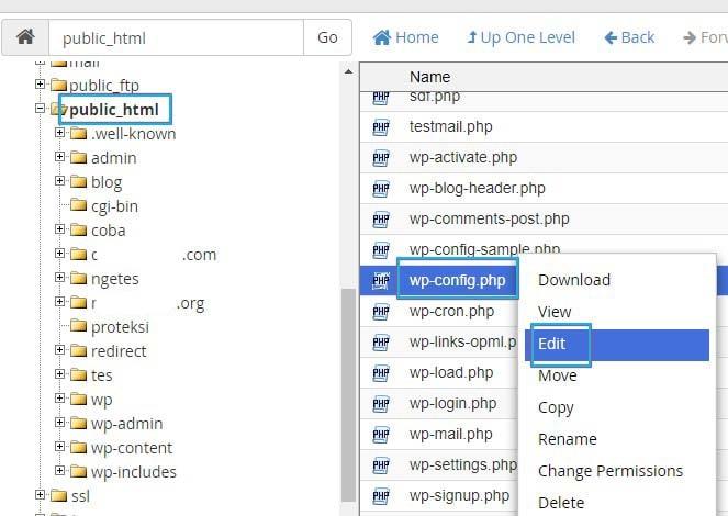 Checking URL Settings Via cPanel